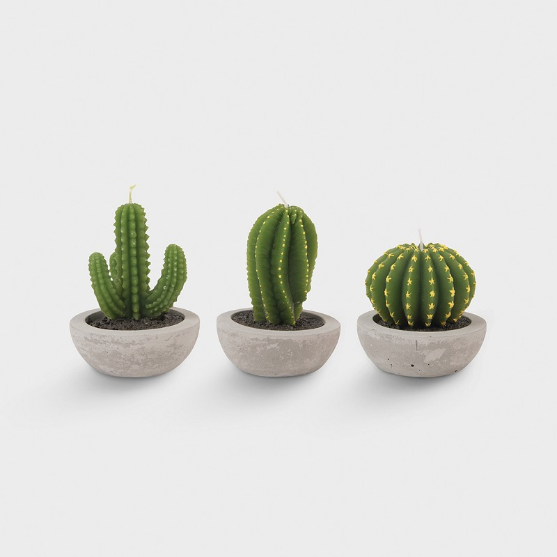 Cactus candle assorted - CANDLES - & klevering ws.